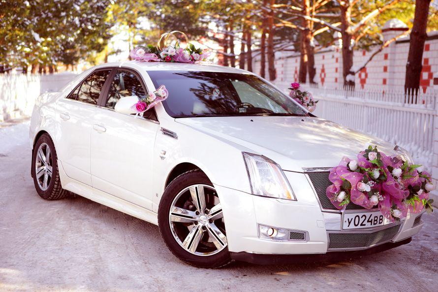 Фото 4115955 в коллекции свадебный автомобиль Cadillac CTS - Cadillac CTS - аренда авто на свадьбу