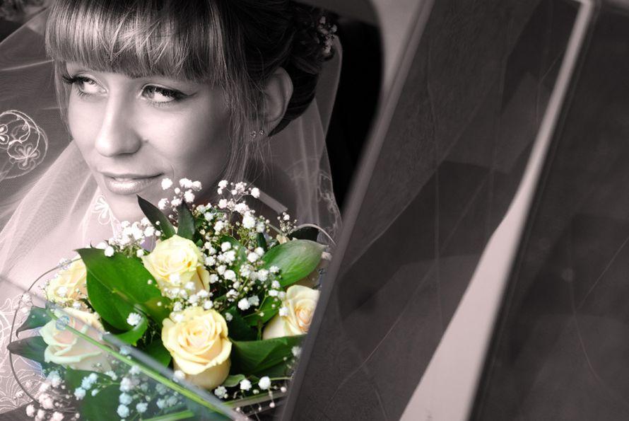 Фото 548068 в коллекции Свадьбы - Фотограф Александр Тимофеев