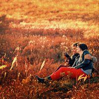 пара, осень, закат, цвет, объятья