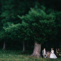 Великолепная свадьба Ирины и Александра