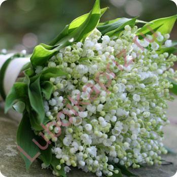 Фото 4905553 в коллекции Букеты невесты - Салон цветов Любой Каприз