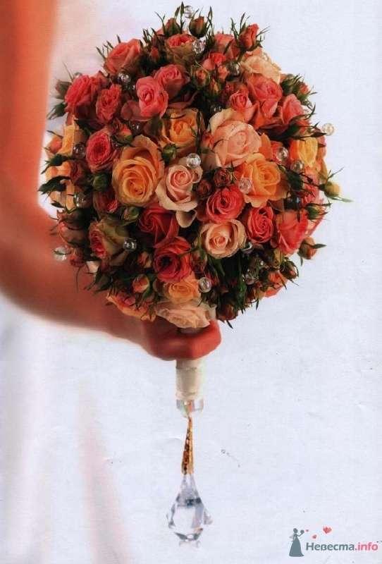 розы - фото 27671 Багирочка  Мэри