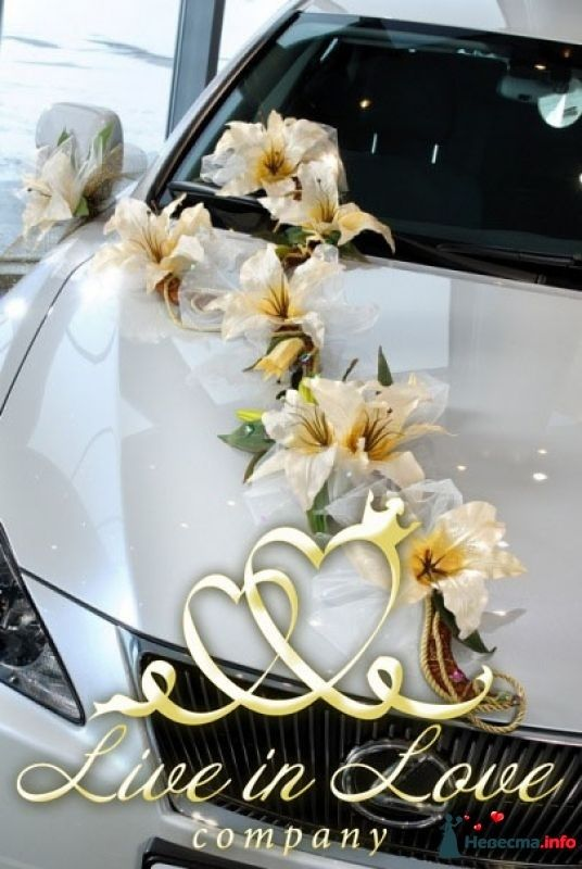 Фото 348802 в коллекции ОФОРМЛЕНИЕ МАШИН - Live in LOVE company - оформление свадеб