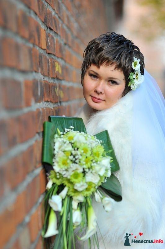 Фото 352972 в коллекции Мои фотографии - Свадебный фотограф Юлия Панфилова