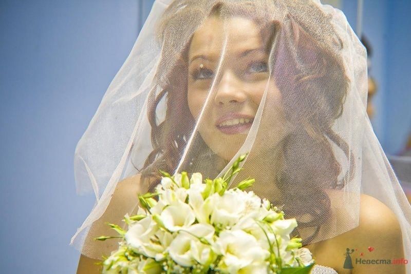 Фото 53495 в коллекции Мои фотографии - Юлия И.