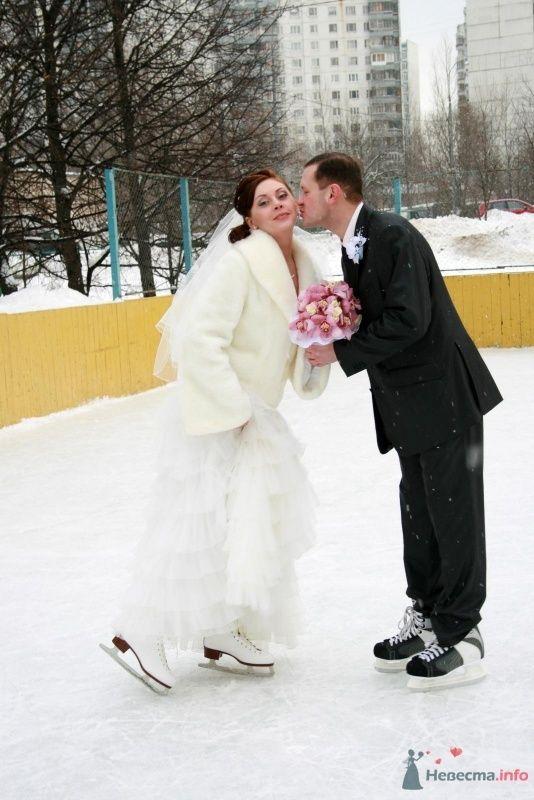 Фото 65590 в коллекции Татьяна и Вадим - Фотограф Настя Лахина