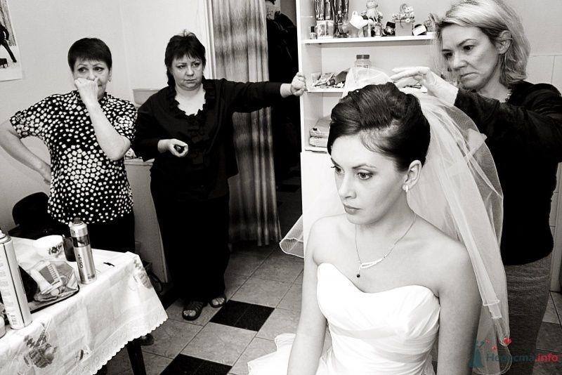 Фото 65596 в коллекции Татьяна и Вадим