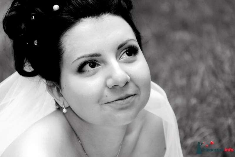 Фото 127915 в коллекции Елена и Александр - Фотограф Настя Лахина