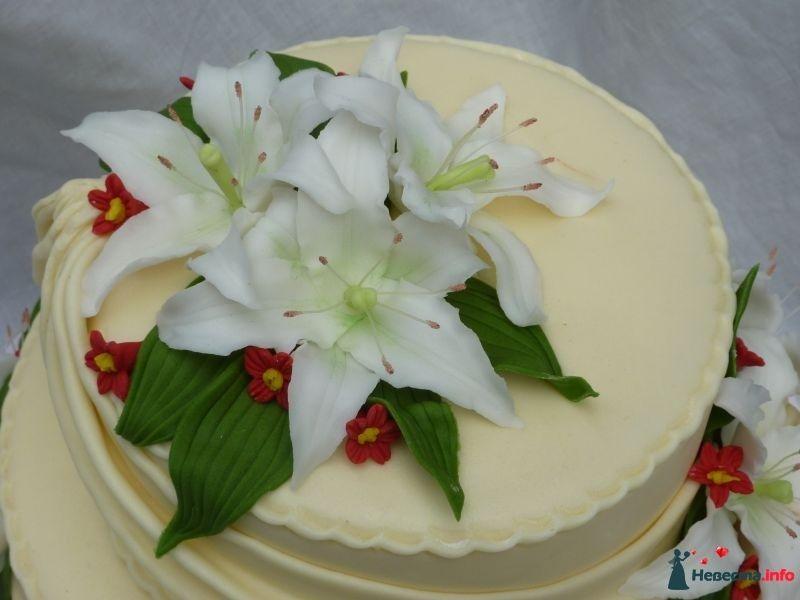 фото тортов с лилиями