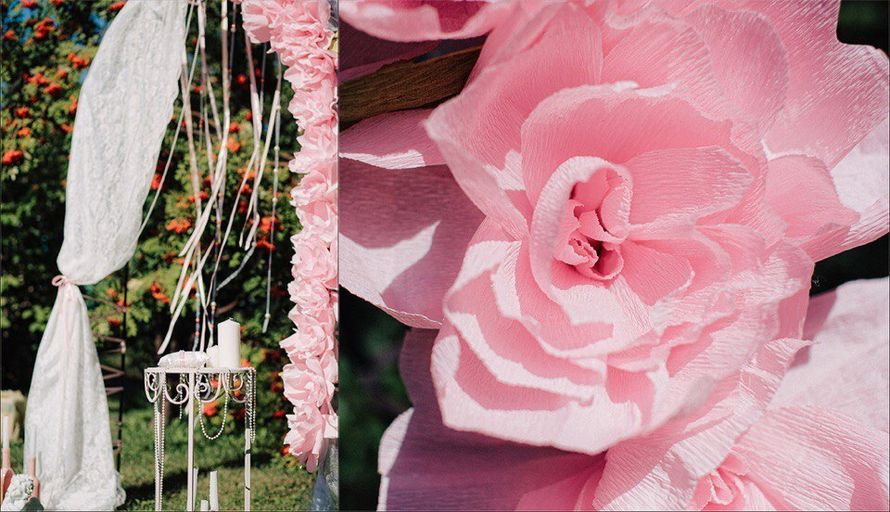 Фото 8546700 в коллекции Портфолио - Птичка wedding - оформление