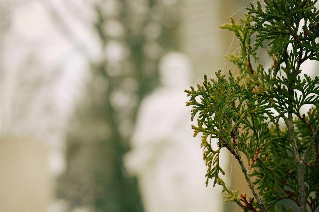 Фото 5702203 в коллекции пейзаж - Фотограф Кристина
