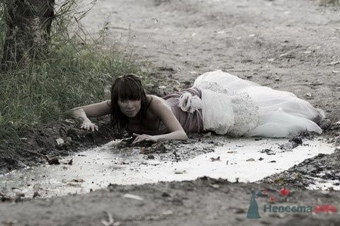 Фото 3772 в коллекции Свадебная суета - leshechka