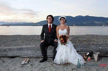 Фото 5421 в коллекции Свадебные курьезы