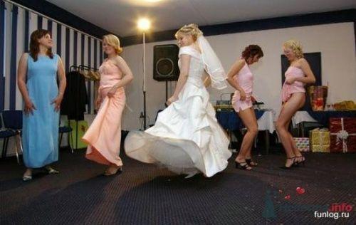 Фото 5543 в коллекции Свадебные курьезы