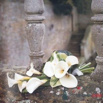 Фото 6689 в коллекции Букет невесты