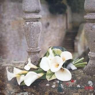 Фото 6689 в коллекции Букет невесты - leshechka