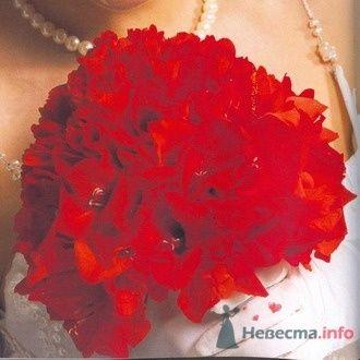 Фото 6755 в коллекции Букет невесты - leshechka