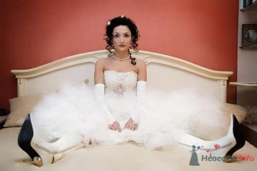 Фото 7444 в коллекции Свадебная фотография - leshechka