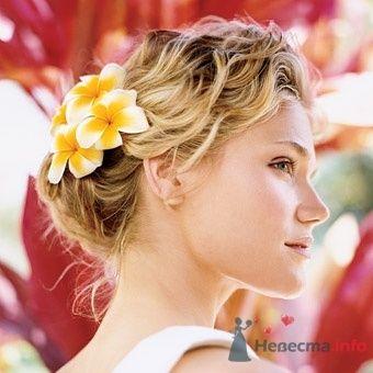 Фото 8322 в коллекции Прически с живыми цветами