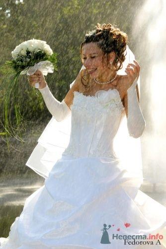 Фото 14159 в коллекции Свадебная фотография