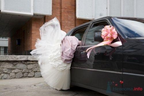 Фото 14443 в коллекции Свадебная фотография