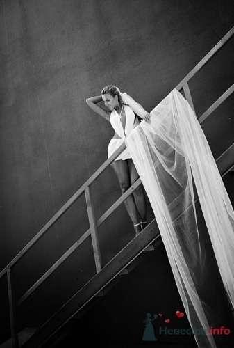 Фото 19534 в коллекции Мои фотографии - leshechka