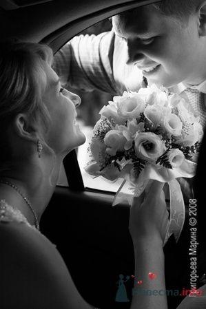 Дима и Настя - фото 2204 Свадебный фотограф Марина Григорьева