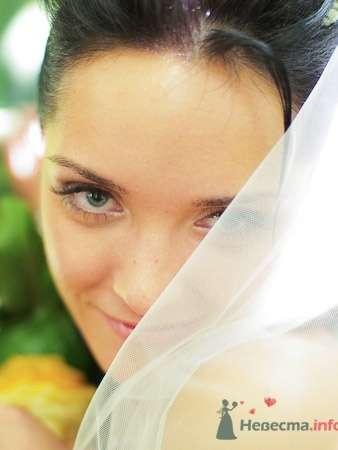 """Фото 633 в коллекции Свадьба в стиле """"Секс в большом городе"""" - Студия фото и видеосъёмки Aliya Pavrose"""