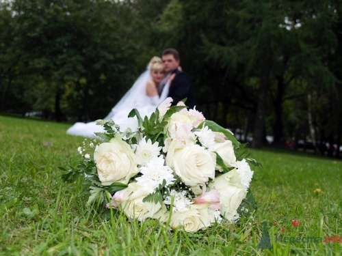 Фото 721 в коллекции Свадьба Кати и Сергея - Невеста01