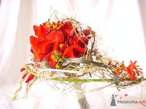 Букет с цветами гладиолуса - фото 734 Флорист-дизайнер Екатерина