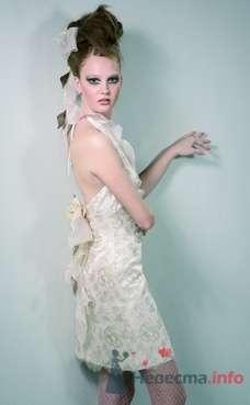 Свадебное платье Domo Adami от ПЛЮМАЖ - фото 1156 Плюмаж - бутик выходного платья и костюма