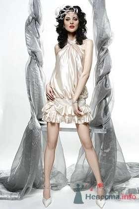 Коктейльное платье CHATEAU MARGAUX - фото 30436 Плюмаж - бутик выходного платья и костюма