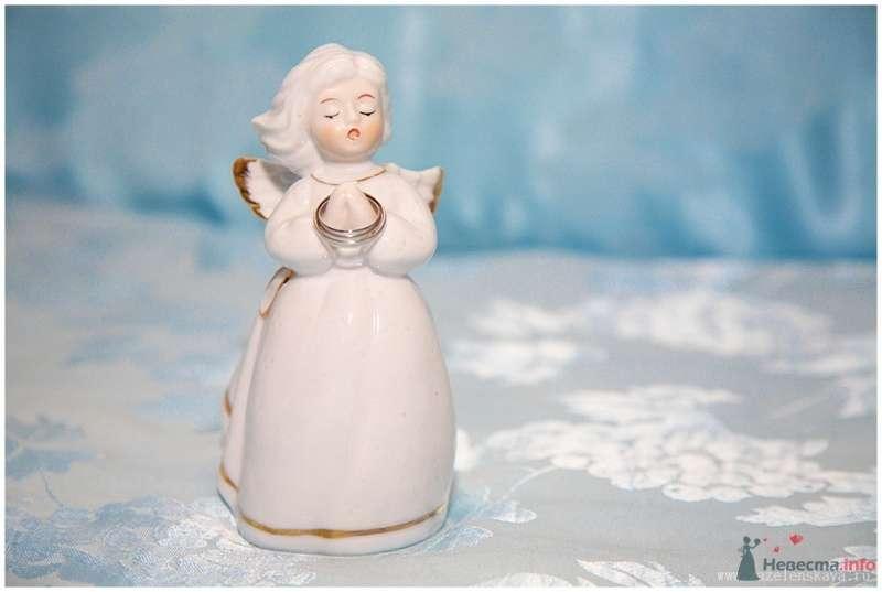 Фото 65095 в коллекции Свадьбы - Фотограф Оксана Зазеленская
