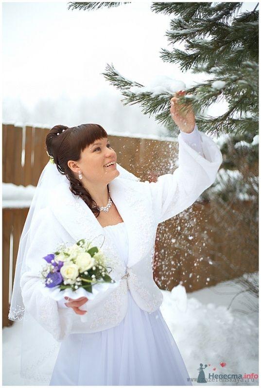Фото 65113 в коллекции Свадьбы - Фотограф Оксана Зазеленская