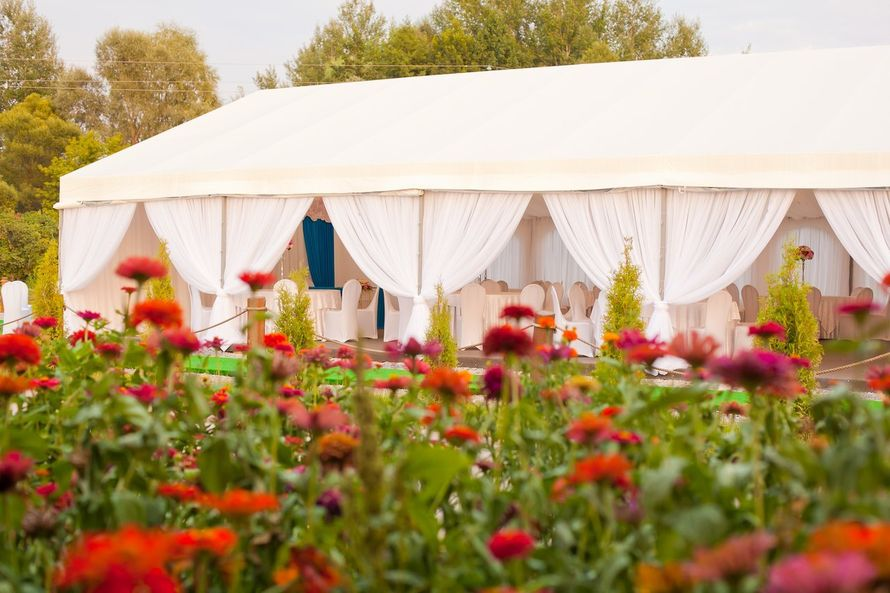 Фото 7467266 в коллекции Портфолио - Аренда шатра от Ателье идеальных свадеб
