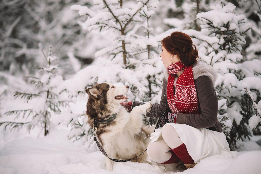Фото 6053147 в коллекции Зимняя сказка для Маши и Юры - Фотограф Владимир Большаков