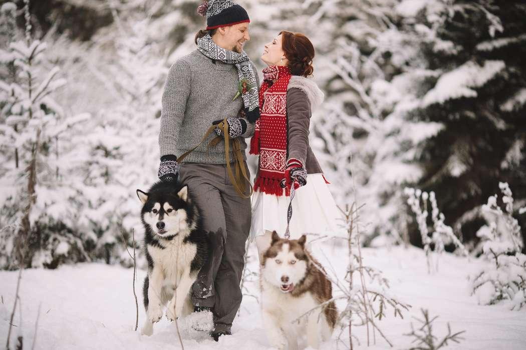 Фото 6053151 в коллекции Зимняя сказка для Маши и Юры - Фотограф Владимир Большаков