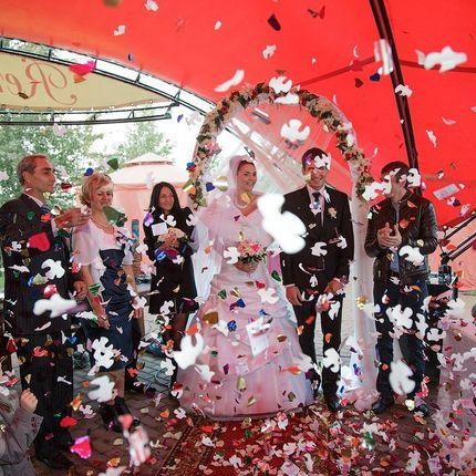 Ведущи и диджей на свадьбу, корпоратив