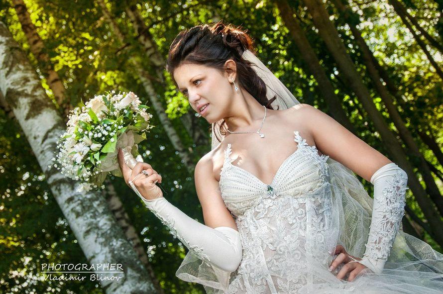 Фото 2120826 в коллекции Мои фотографии - Фотограф Блинов Владимир