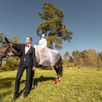 Фотосъёмка свадьбы неполный день
