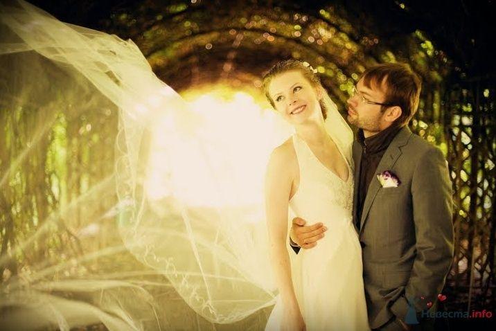 Жених и невеста стоят, прислонившись друг к другу, под зеленой аркой - фото 40816 malysh_eva