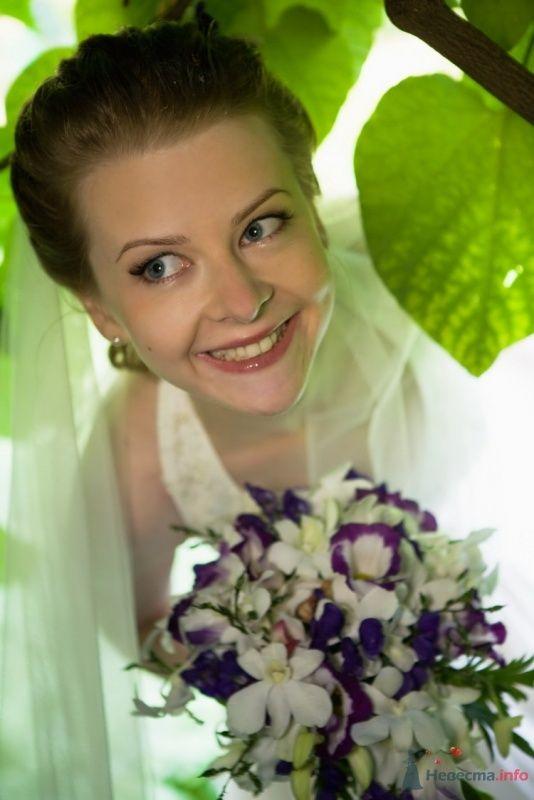 Фото 40913 в коллекции Наша свадьба by sandakov.ru -- фотографы Егор и Михаил - malysh_eva