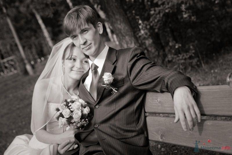 Фото 42452 в коллекции наша веселая свадьба - Katerina22