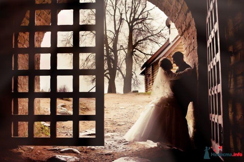 Фото 378297 в коллекции Мои фотографии - Свадебный фотограф Сермяжко Дмитрий