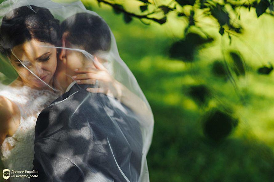 Фото 6168309 в коллекции свадебная фотография; лав-стори /wedding photo; love-story - Фотограф Дмитрий Коробов