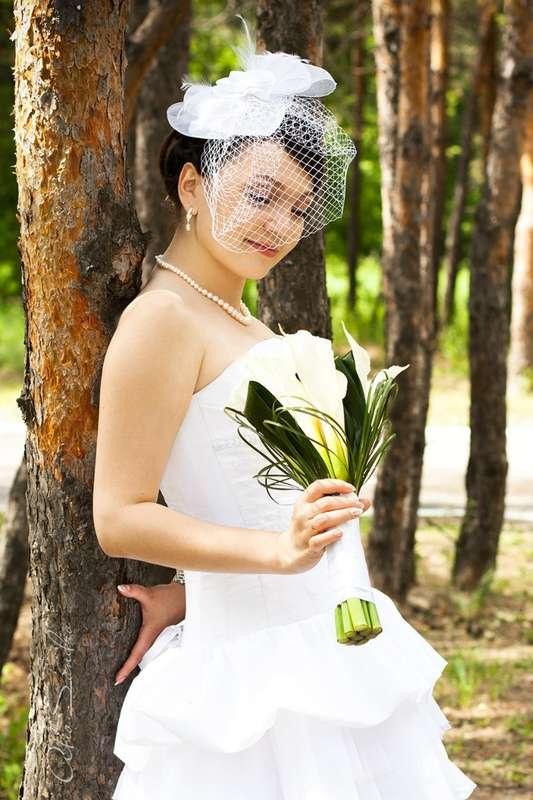 Alio Sandro. Свадебный и семейный фотограф.  +7-981-845-3165 - фото 6224625 Фотограф Alio Sandro
