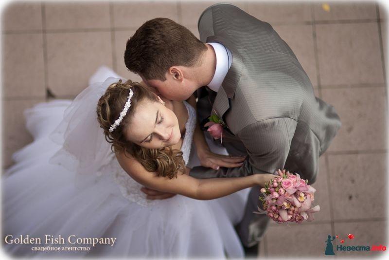 Фото 389586 в коллекции Свадебные фотографии - Свадебное Агентство Golden FIsh Company