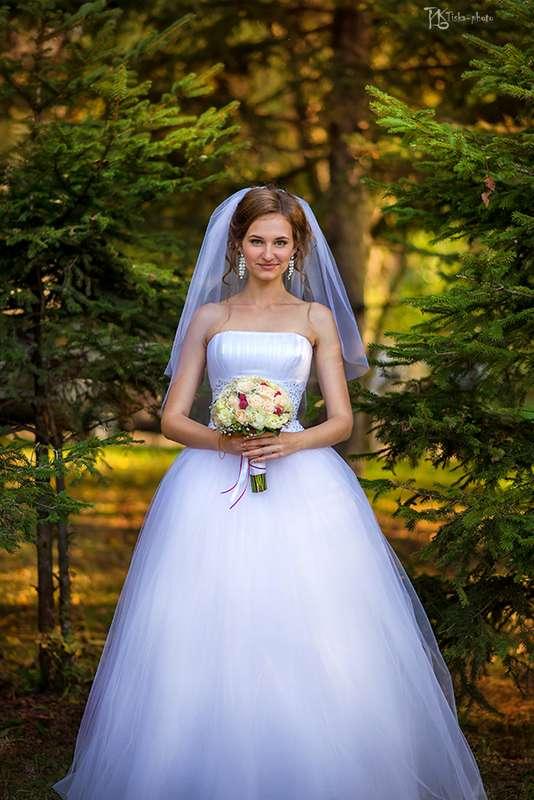 Фото 7394386 в коллекции Портфолио - Фотограф Татьяна Исаева-Каштанова