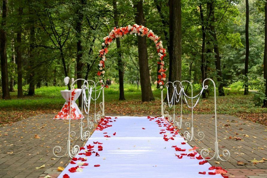 Фото 6699328 в коллекции Выездные регистрации брака - Ведущая Мария Лаптева