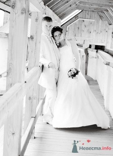 Фото 60749 в коллекции свадьба